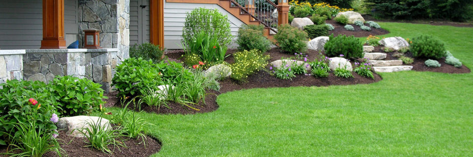 Beautiful Landscapes.
