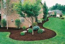 mulch bed copy