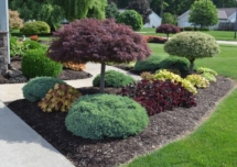Gallery_Landscaping3