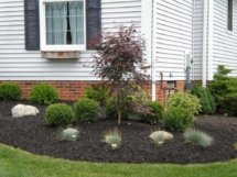 Gallery_Landscaping5
